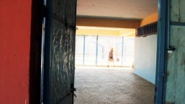 school sxoleio paideia