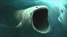 minimal skitso shark