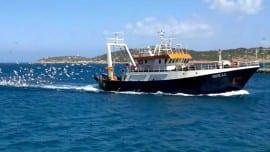 varka thalassa sea