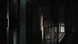 prison fulakes