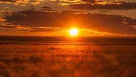 sun minimal sunset