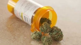 medical-cannabis-sanjay-gupta-pharmaceutical
