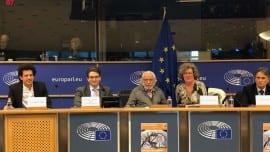 grammatikakis european parliament evrokoinovoulio